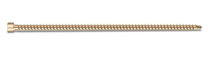 ASSY Plus Cylinder Head Timber Screw